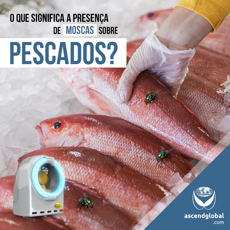 CAPTOR®, Armadilha Luminosa, nas Redes Sociais em Dezembro-Se você preza por qualidade, após adquirir os melhores peixes, conte com CAPTOR® para afastar os insetos voadores de sua cozinha.