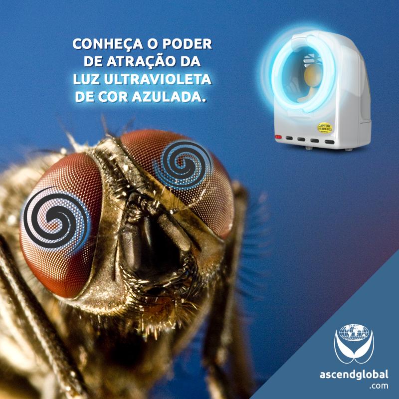 CAPTOR®, Armadilha Luminosa Profissional nas Redes Sociais em Março e Abril-CAPTOR® é uma armadilha profissional com lâmpada de luz ultravioleta de cor azulada: a mais indicada para atrair o maior número de insetos possível.