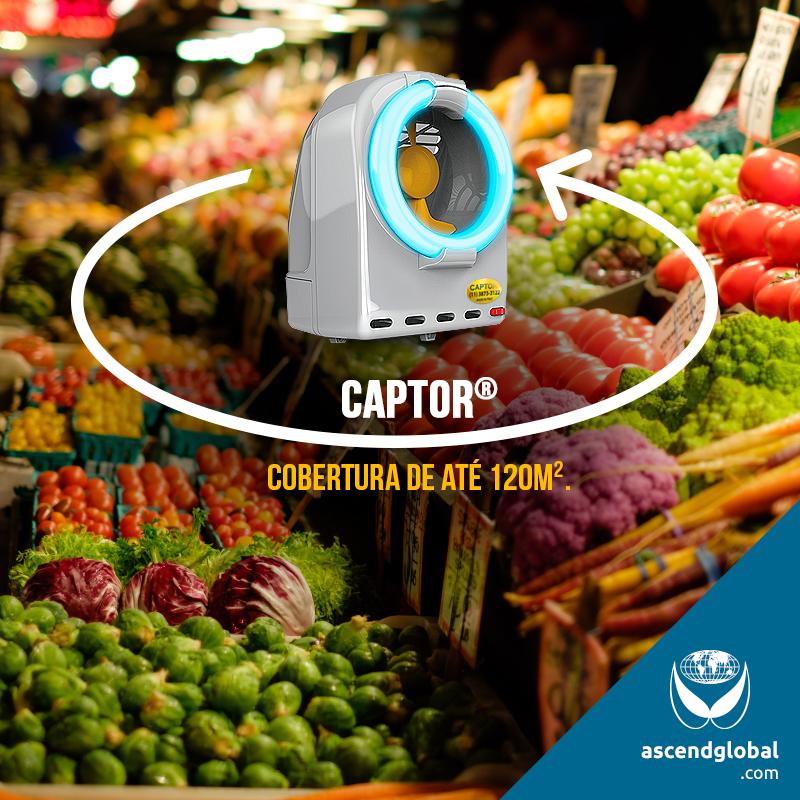 CAPTOR®, a Italianinha nas Redes Sociais em Junho e Julho-Para um controle eficaz de pragas urbanas, como os insetos voadores, conte com CAPTOR®: alcance de 120m².