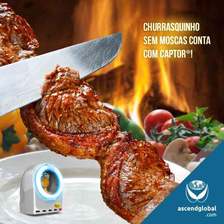 Insect Light Traps - Where to use - Churrascaria Churrasco Carne