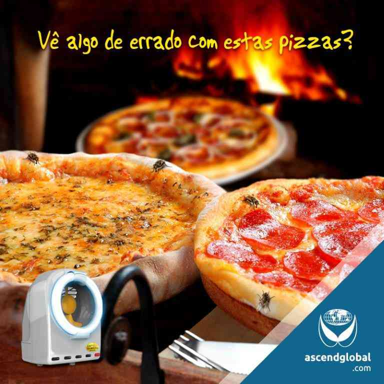 Armadilha Luminosa - Onde Usar - Pizzaria Pizza