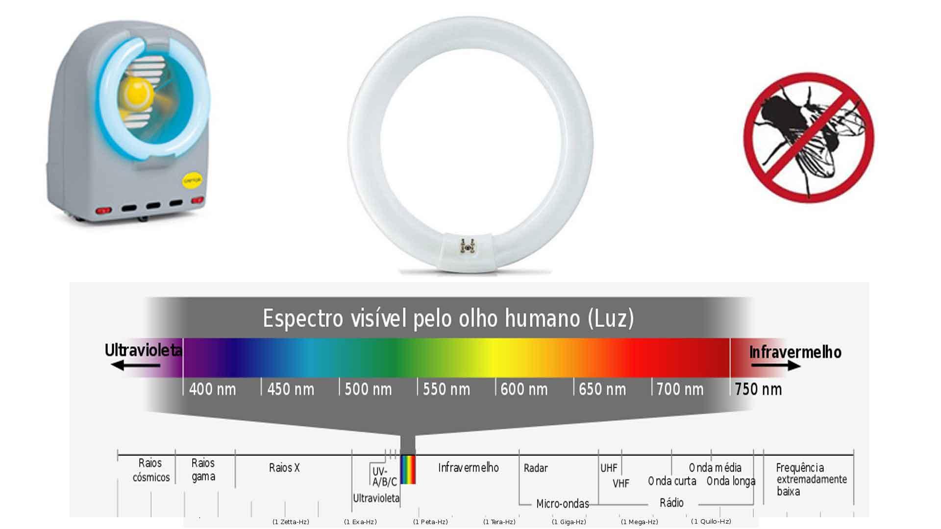 Como funciona a lâmpada UV nas armadilhas luminosas para insetos voadores e curiosidades